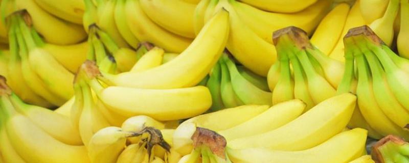 香蕉是性寒还是性热
