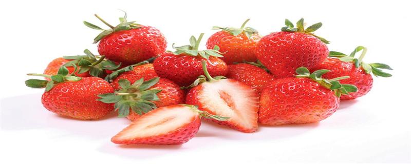 草莓里有虫子吗