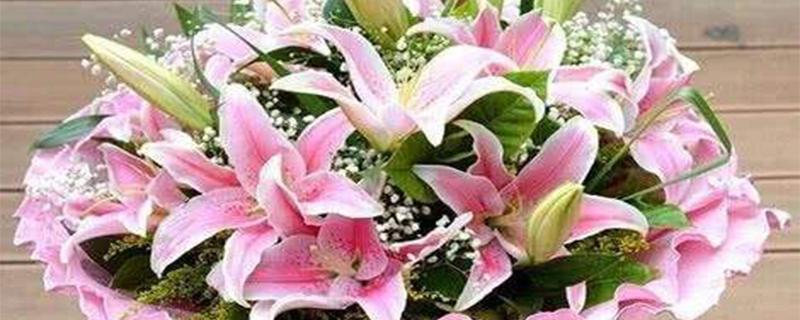 水仙百合花期多长时间