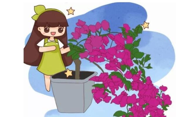 丑得想扔的花,被他剪成传家宝,全国花友跟着学!
