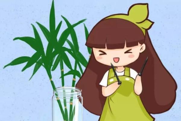 最难养的12种花,1杯水就能爆盆,干净又省事!