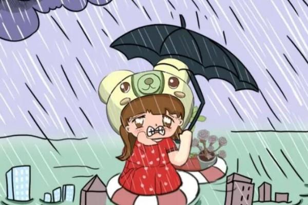 前有暴雨、后有台风,多肉泡水还有救不?