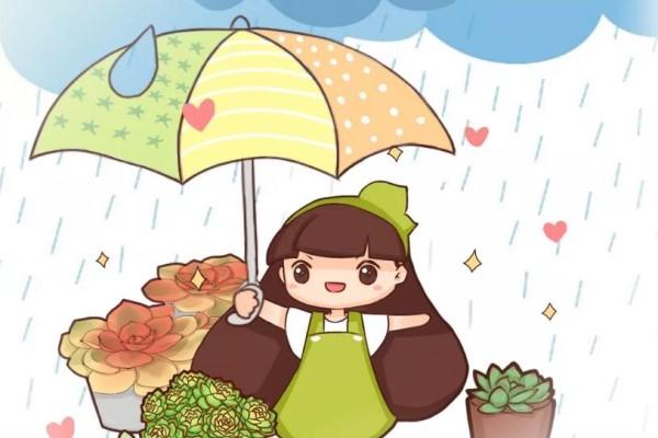 6种花太娇气,一淋雨就生病,治不好还传染!
