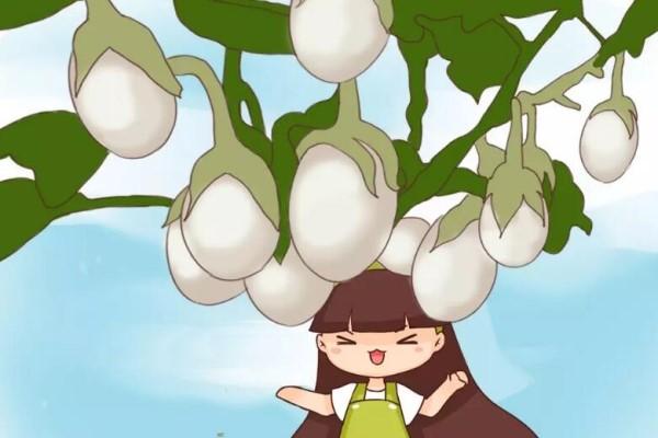 最奇葩的4种瓜,一边砍一边长,满树结出大鸡蛋!