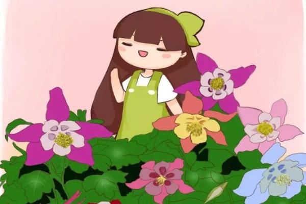 这5种花,名字土掉渣,却能开出1000朵花,美翻天!