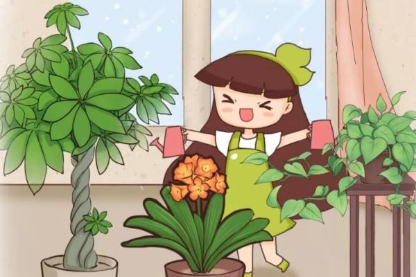这花就得穷养,花盆越小、越长得旺!