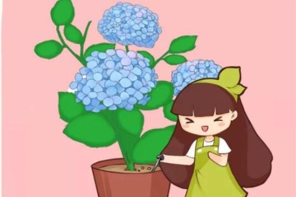 土里埋个废铁钉,养花再也不黄叶,疯长不要命!