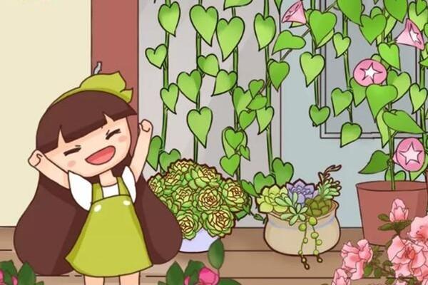别嫌阳台小,种点花草,感觉真好!