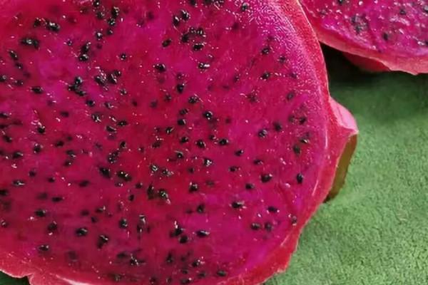 这花就得旱着养,盆越浅,水越少,开花越旺盛!