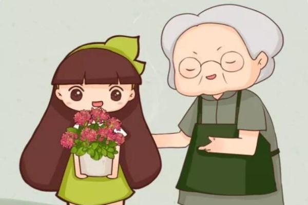 年纪大了,就养这6种寿星花,健康养身心!