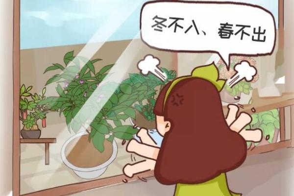这6种花,千万别往屋里搬,外面冻俩月,花开才更旺!