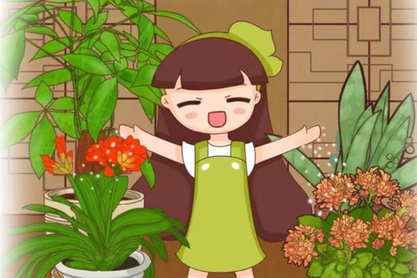 给花上点抗冻肥,冬天冻不死,还能提前开花!