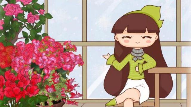 3种花别乱浇水,水越多、越不开花!
