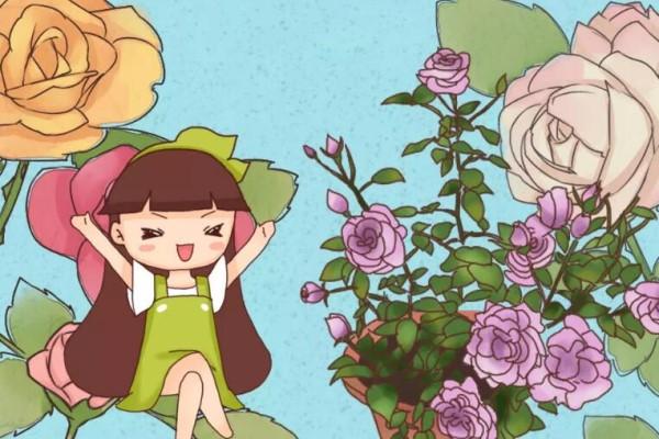 养花就得用粪桶,越养花越壮,不管也能开爆盆!