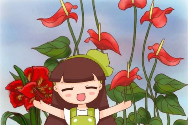 20种花不怕冷,大冬天照样开花,南北方都能养!