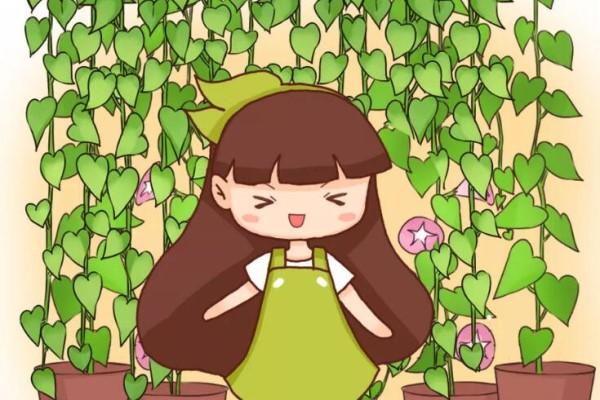 这花挂窗边,1个月垂下2米长,呼呼窜成绿帘子!