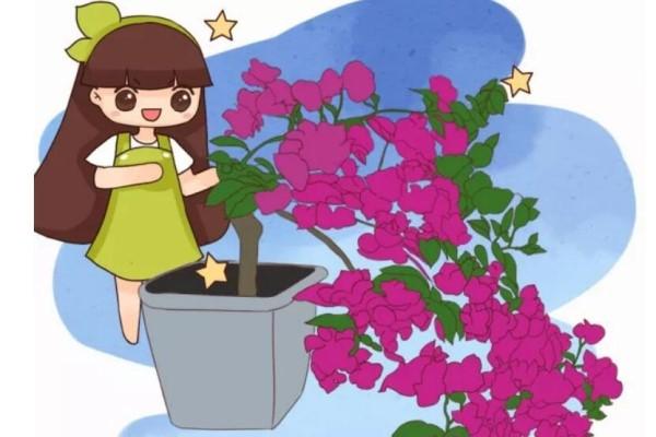 家里有这花,露养断水2个月,安全越冬50盆!