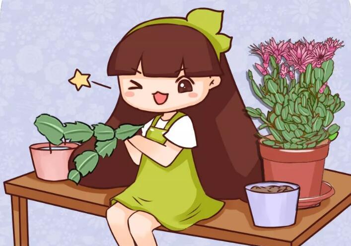 刚冒出来的花苞,被老妈撸去一大半,花竟然越长越好看!