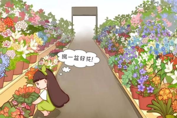 花市里猫腻多,碰见这种花,千万别买,养不活浪费钱!