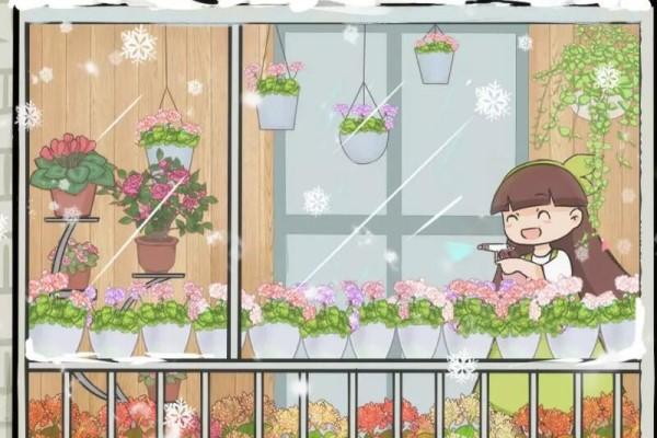 封闭阳台养花,他说第二,没人敢说第一!