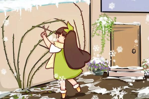10种花,现在赶紧剪,否则熬不过冬天!
