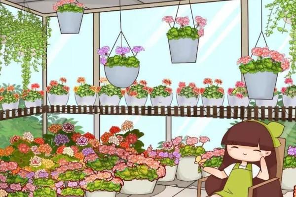 12月扦插这种花,成活率超高,大白根呼呼冒!