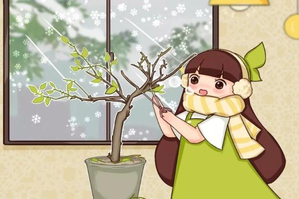 """冬天修剪分""""轻重"""",有的花剪狠了,小心再也不开花!"""