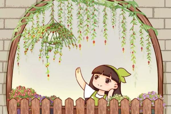 窗户边养盆它,耐阴还开花,养成花帘子太美!