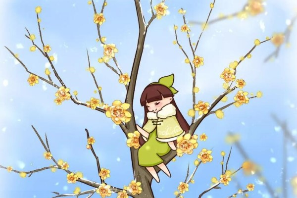 大雪天,只有这花活着,还在开花!