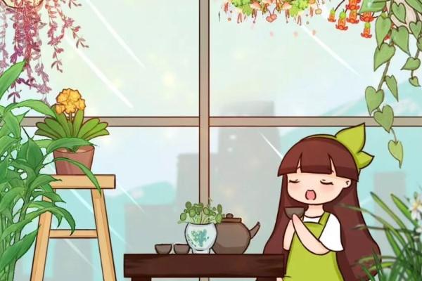 上午赏花、下午赏花、晚上还赏花!
