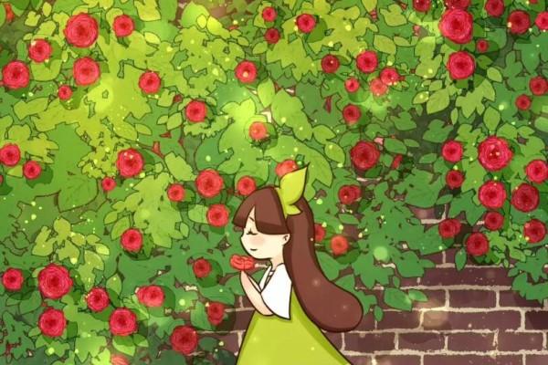 开春必养这种花,半年爬满墙,开花1000朵!