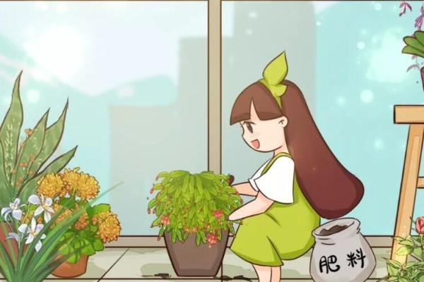 10种花,现在快施肥,不然今年没花看!