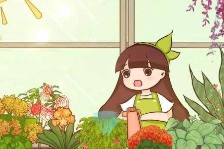 春天给花1盆水,疯长拦不住,爆满整个家!