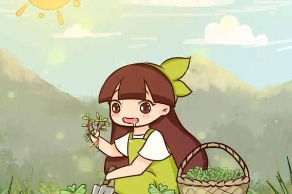 春天野菜赛黄金,好吃又养生,堪称天然药!