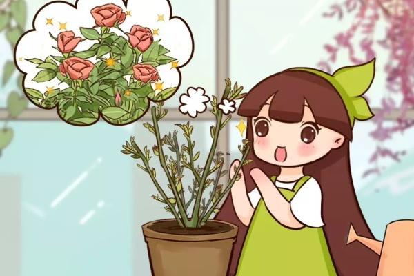 春天修剪正当时,撸叶、摘芽、剪光头,下狠手才开花!
