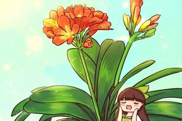 这花吃了啥?叶子绿的滴油,3年不用换盆!
