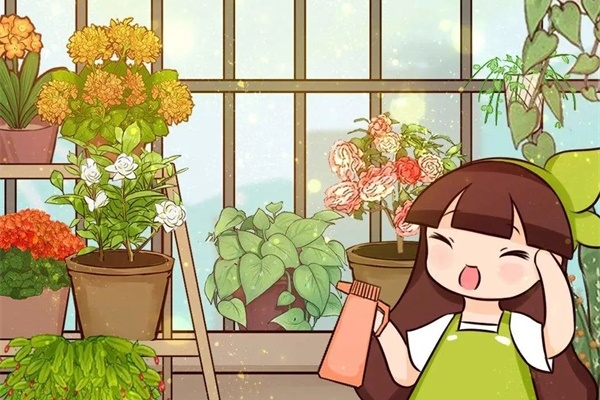 把花养成菜,迟迟不开花,原因就是它!
