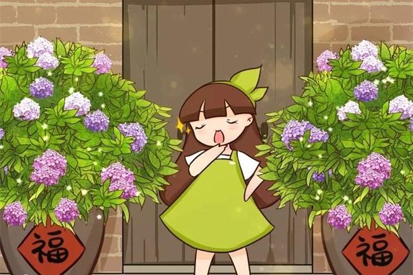 大水缸养花,30年不换盆,放门口就是传家宝!