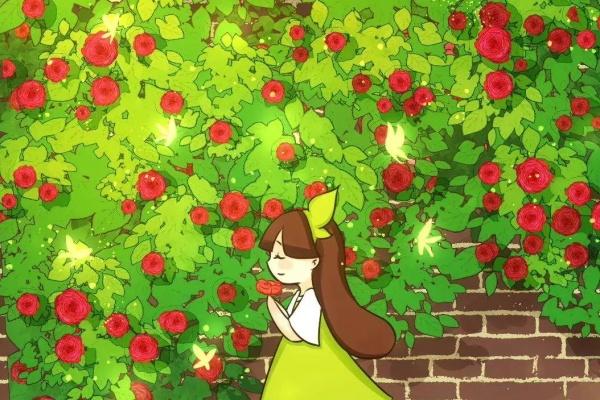 7种花要慎养,房前屋后都爬满,邻居有意见
