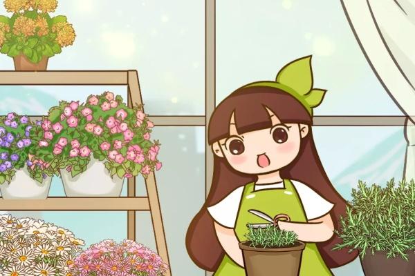 春天乱浇水,花浇1盆死1盆,赶紧停手!