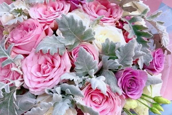有品位的3种花,屋里、院子都能养,天热也不怕!