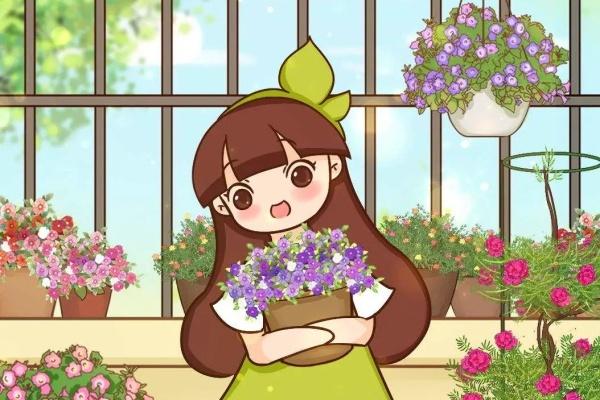 12种花,小盆养、开花多,夹缝里长疯了!