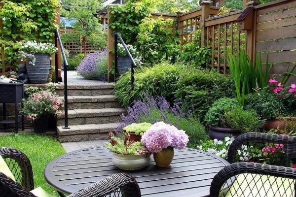 小小院子,种花喝茶,这才是我想要的生活!