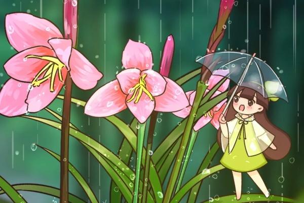 """9种花,能预报天气,一""""变脸""""就下雨!"""