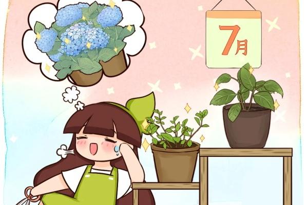 11种花,7月必须剪,剪晚了不开花!
