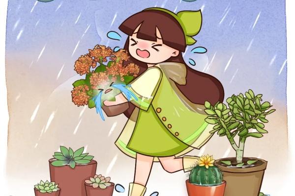 10种花,最怕下雨天,淋完雨就死!