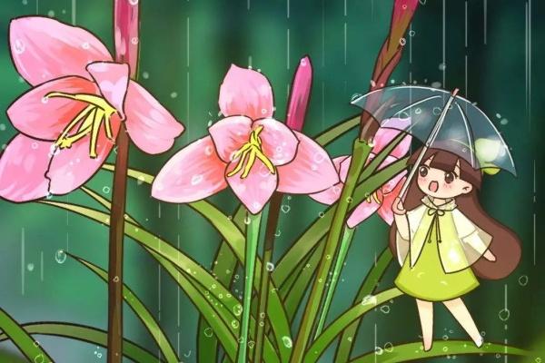 比绿萝还好养的花,整盆丢水里,泡3天也不会死!