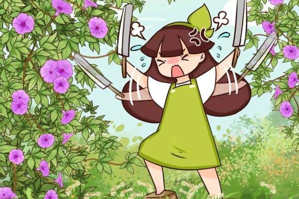 """5种花,长势太凶猛,房子都被""""吃掉"""",1根藤开上千朵花!"""