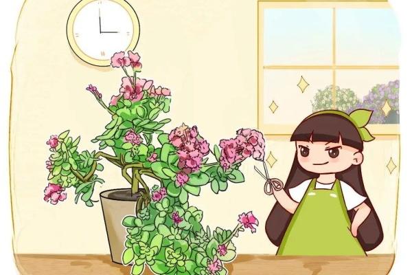 5种花不能长太高,一长高就砍,否则再也不开花!