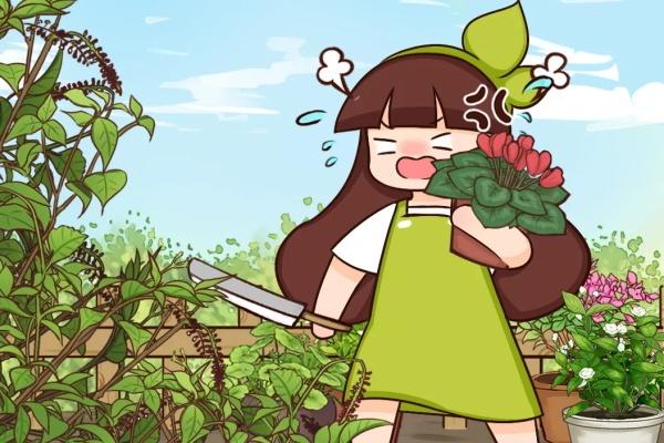38种入侵植物,全村出来挖,挖完又长一大片!